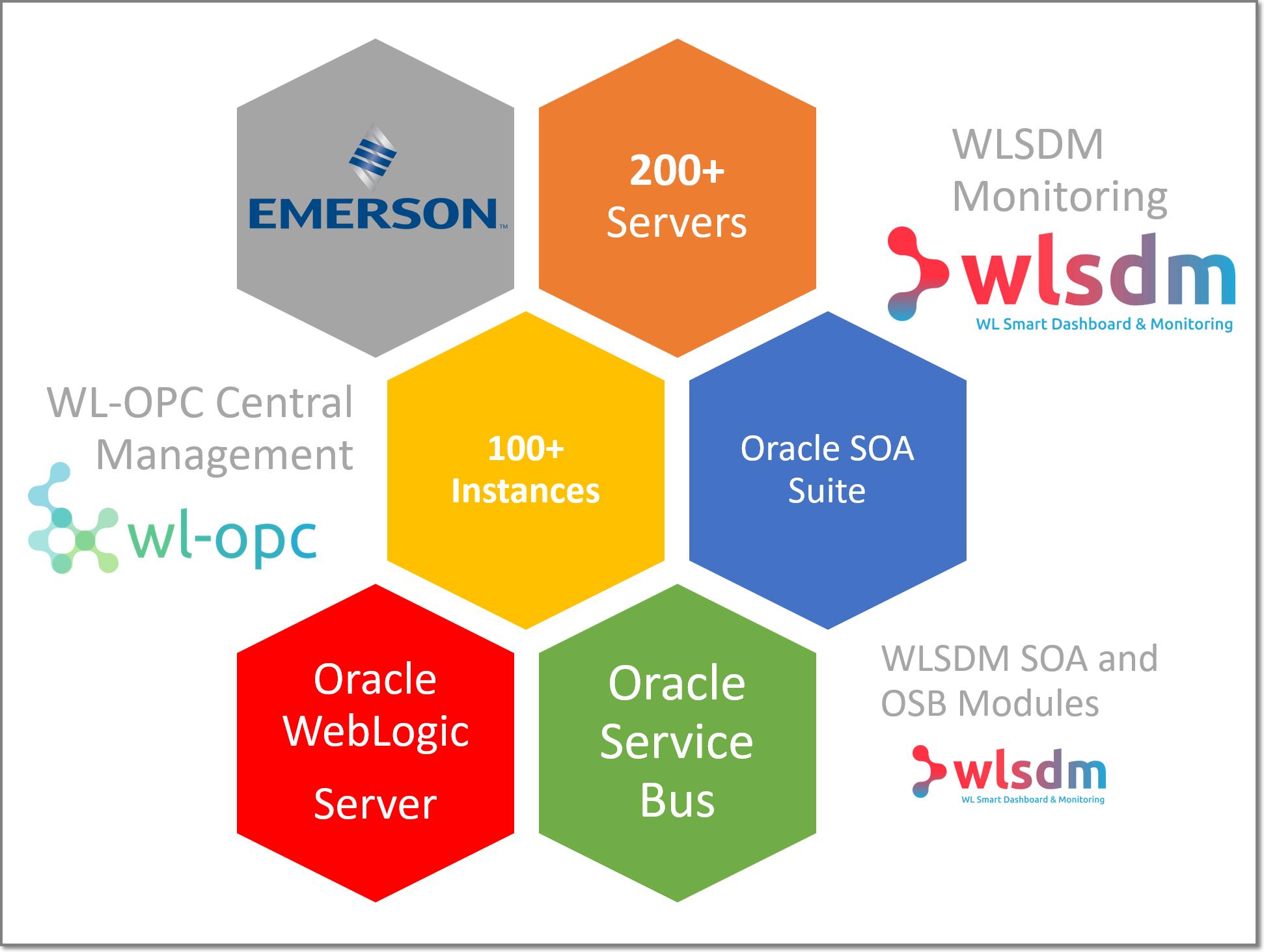 WLSDM Reviews | Emerson Electric Co | Soumya Prakash Mishra